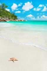Sea star at beach Anse Georgette at Praslin, Seychelles
