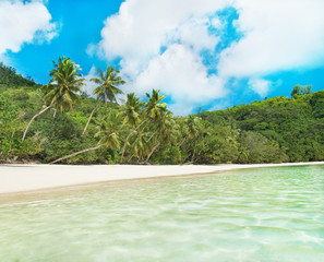 Beach Baie Lazare with palm trees at Mahe, Seychelles