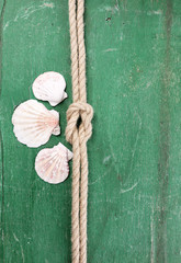 Marine knot on color wooden background