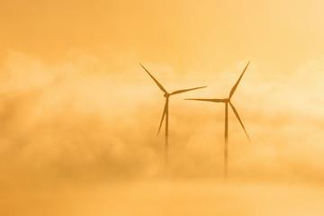 Wind turbines in misty sunrice