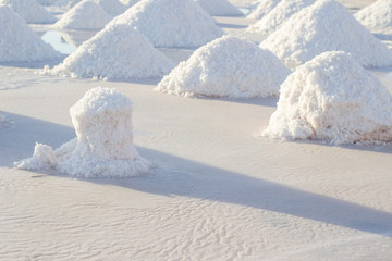 Sea salt mounds at salt marsh