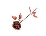 Beautiful bronze rose.