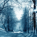 Winter  alley - 70146348