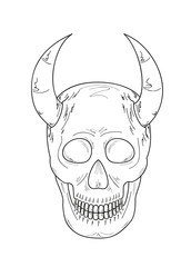 sketch of the skull with horns