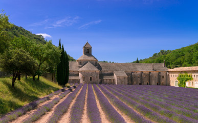 Monasteries of the Cistercian