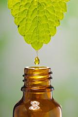 Alternative Medizin mit Öl einer Heilpflanze