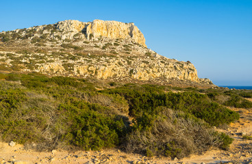 The nature of Cyprus
