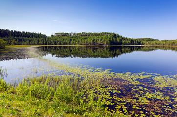 Norwegian summer lake