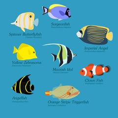 Flat Design Exotic Fish set