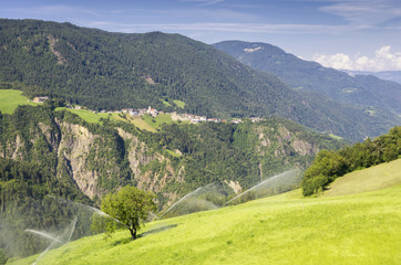 Organic Agriculture in South Tyrol