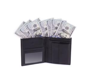 Purse with dollar bills.