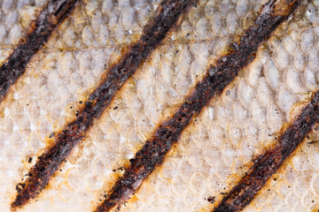 Texture of fish grill skin close up.