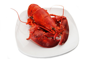 Whole Cooked Lobster on a White Plate