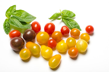 Heirloom cherry tomatoes and basil leaves on a white background