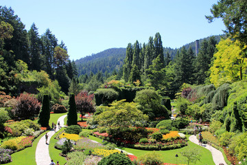 Garden's View