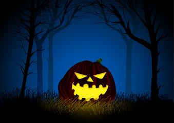 Jack-o-lantern on woods background for Halloween theme