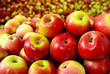 canvas print picture - apple