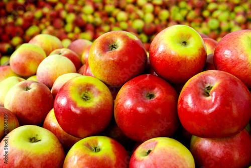 canvas print picture apple