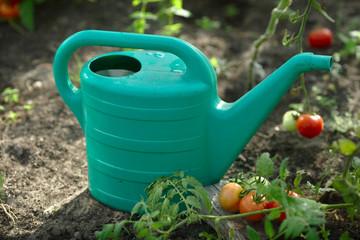 konewka podlewanie ogrodnik