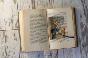 Mavi Kurdela Papatya ve Kitabın Öyküsü