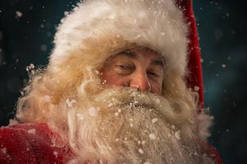 Santa Claus looking at camera
