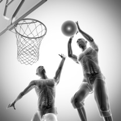 basketball game player radiography image