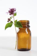 Aromathérapie, l'huile essentielle d'Origan