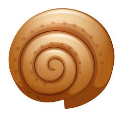 A seashell