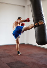 Kickboxer training with punchbag