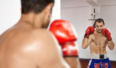 Boxer looking in the mirror