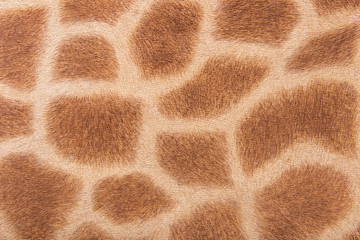 Giraffe fur, imitation background