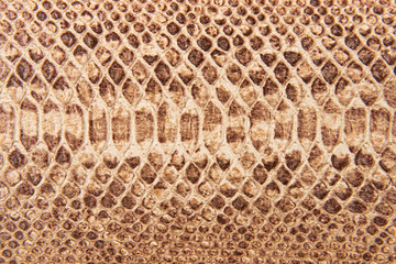 Brown snake pattern imitation, background