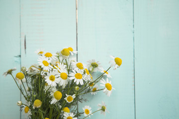 summer bouquet of chamomile on the old blue wooden background