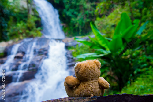 Fotobehang Bos rivier Brown bear sitting at the waterfall