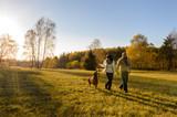 Fototapety Couple walk dog in countryside autumn sunset