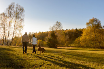 Couple walk dog autumn sunset countryside meadow