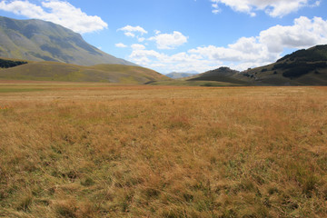 Piana di Castelluccio di Norcia - Monti Sibillini