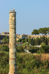 Ruins of the Temple of Artemis, Selcuk