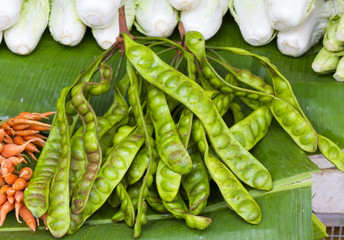 Parkia speciosa - Bunch of Stink Beans Thailand