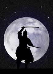 Samurai in the moonlight