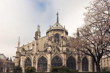 Notre Dame de Paris back View