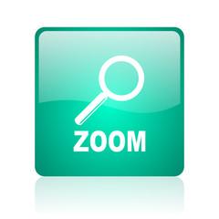 zoom internet icon