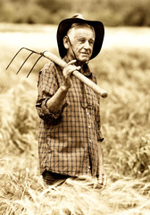 Old peasant in barley field