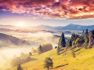 magic mountain landscape