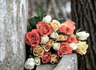 Roses on a cement bench outside
