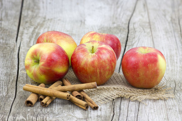 Red apples and cinnamon sticks v