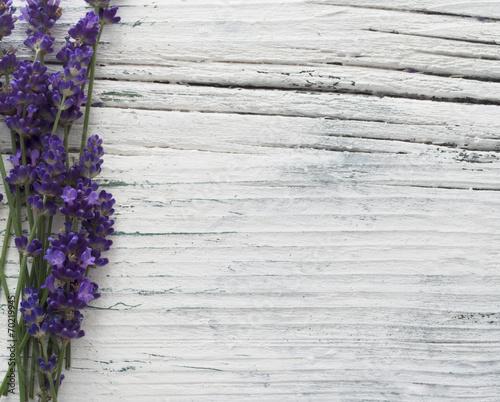 lavender spa flowers