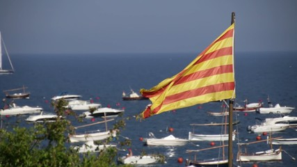 Catalonia Flag Waving in the Seashore