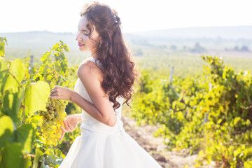 Bride in a vineyard, autumn
