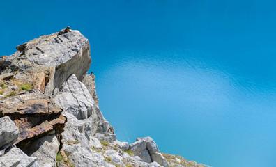 Marmotta al lago Goillet